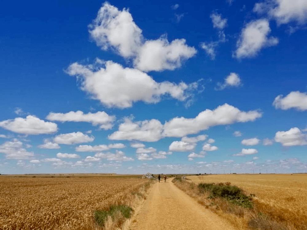cammino santiago cristina